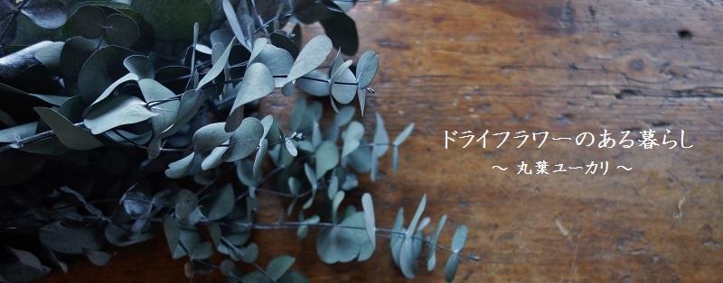 ドライフラワー ユーカリスワッグ APOA SHOP 三重県津市 楽天