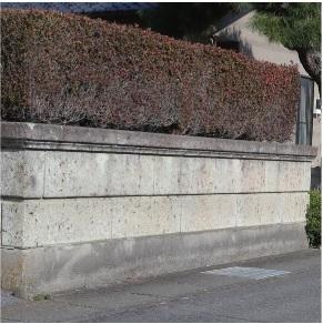 健全な石塀 安全点検